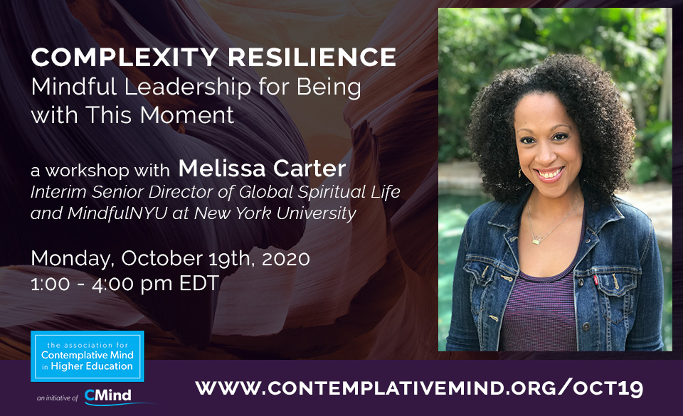 Complexity Resilience workshop with Melissa Carter